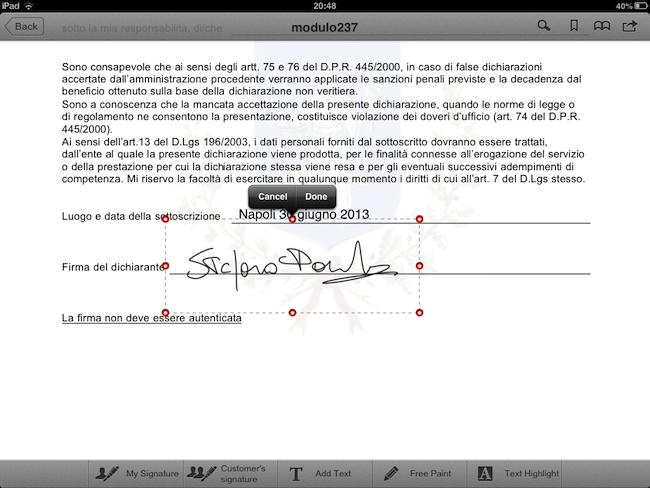PDF form