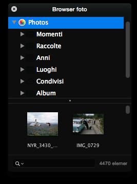 Pixelmator Browser foto