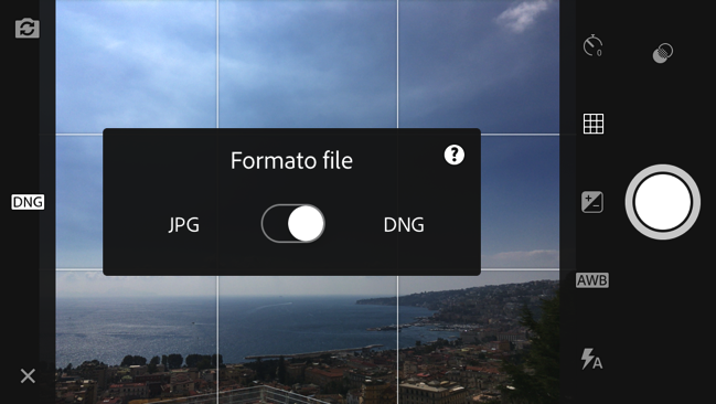 Lightroom iOS DNG