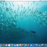 Mondo sommerso: 15 spettacolari foto subacquee come sfondi per Mac, iPhone e iPad