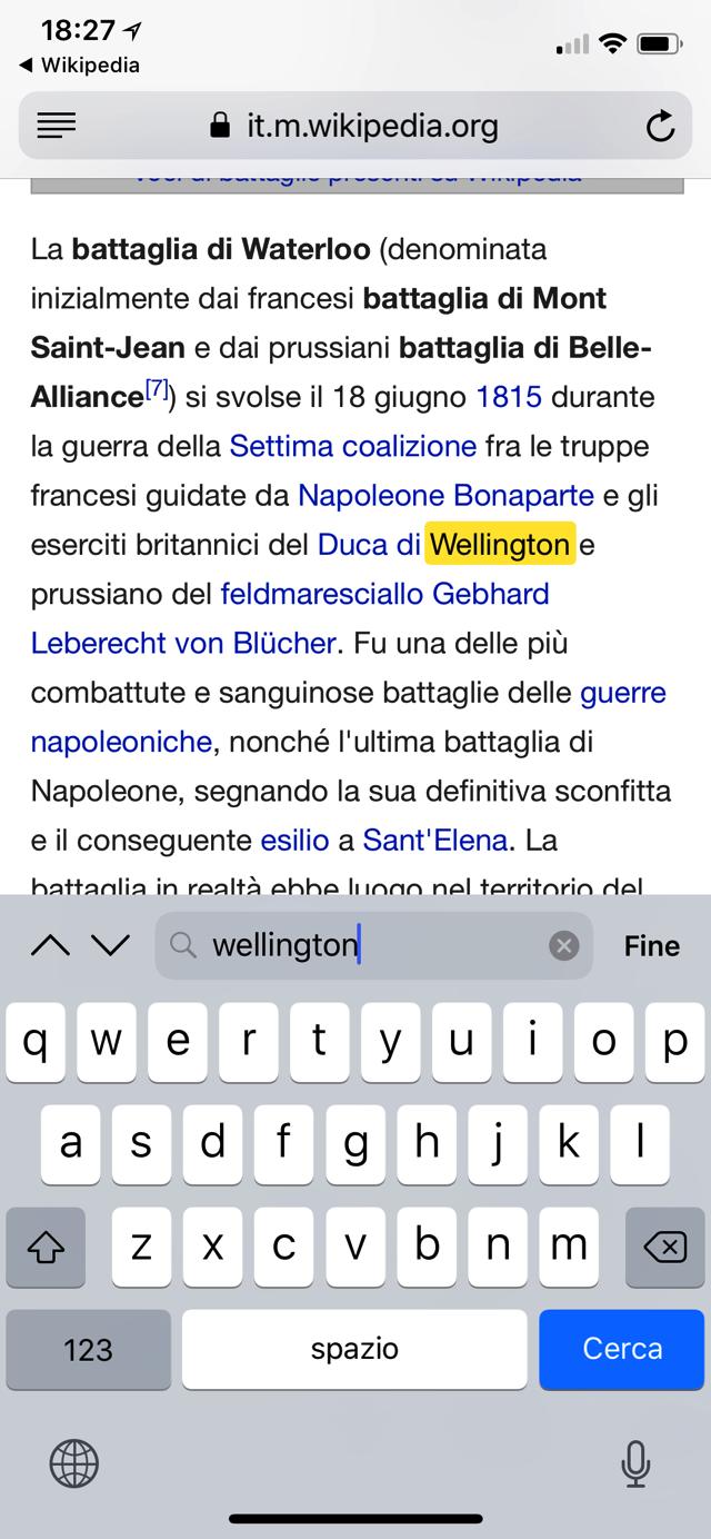 Cerca nella pagina Safari iOS 002