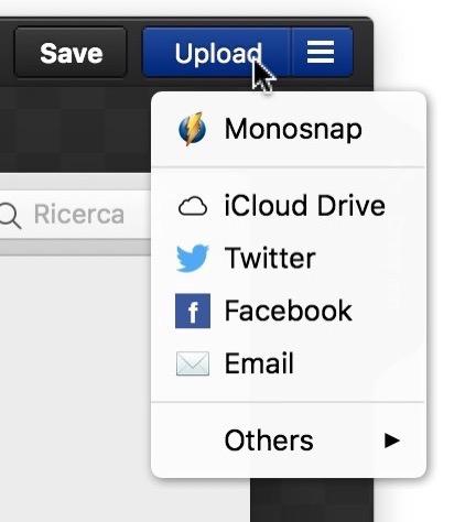 Monosnap opzioni online